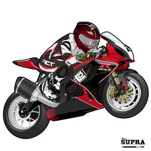 vince-supra-illustration